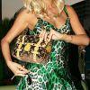 Paris Hilton bag19